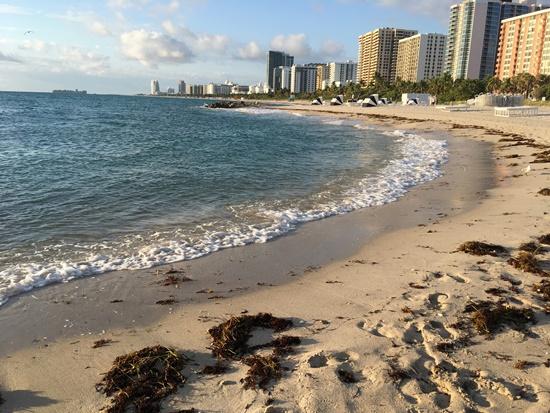 マイアミビーチ④