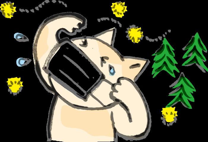 花粉症のイラスト